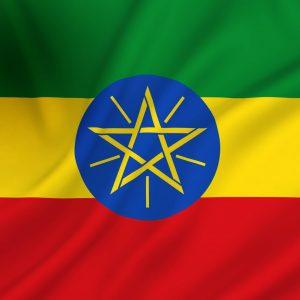 Actie Addis Alem